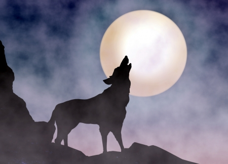 coyote: Wolf Howling at Moonlight Stock Photo