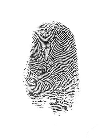 odcisk kciuka: Thumb Drukuj nad Białym