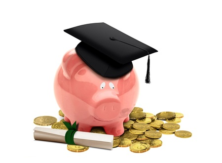 college fund savings: Education Fund with Piggy Bank