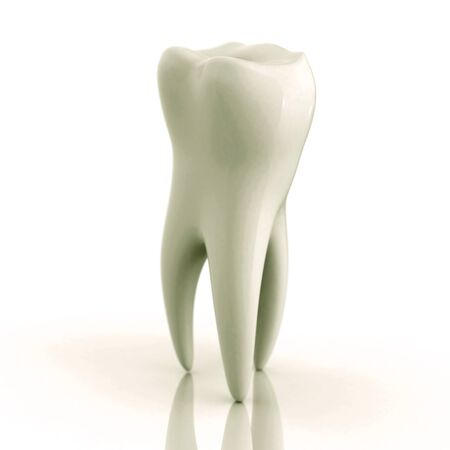 heartiness: Good healthy tooth isolated 3D rendered on a white background