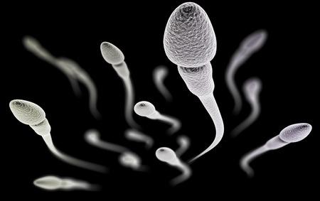 CGI visualisatie van de zaadcellen met (elektronische microscoop simulatie) met focus effect (zwarte versie)