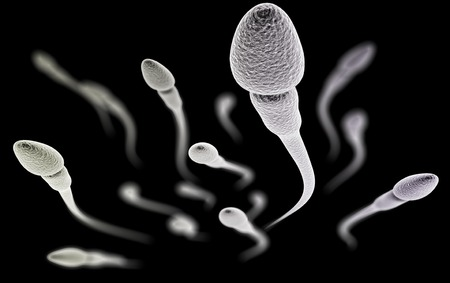 huevo: Visualización CGI de los espermatozoides con (simulación microscopio electrónico) con efecto de enfoque (versión en negro)