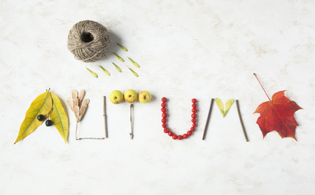 Word autumn written with leaves, apples, berries, tree sticks, nuts and maple leaf. Season concept. Stock Photo