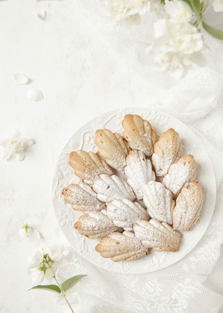 Homemade French cookies (cakes) Madeleine with jasmine tea on white background with fresh syringa floweres. Selective focus. Stock Photo
