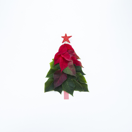 Creative Christmas tree made of poinsettia petals and leaves with red star on top on white background. Imagens