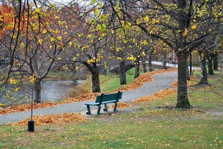 Wooden bench in the autumn park photo