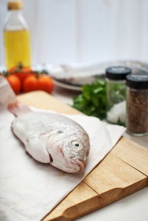 Raw fish with vegetables Stock Photo - 14878738