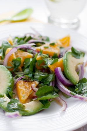 Oranges, watercress, red onion and avocado salad photo