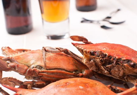 Prepared crabs with amber beer in glass photo