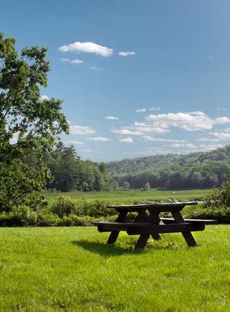 Wooden picnic table on green grass landscape photo