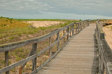 Wooden board path way to the sandy beach photo