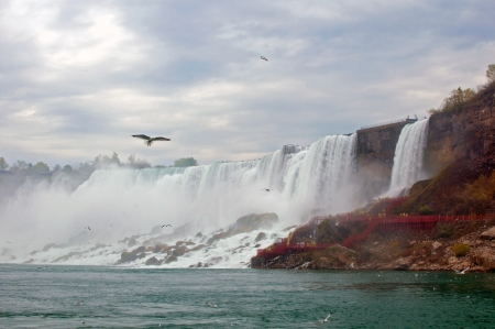 Niagara Falls side view with seagulls