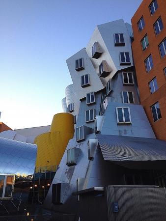 mit: unusual MIT building