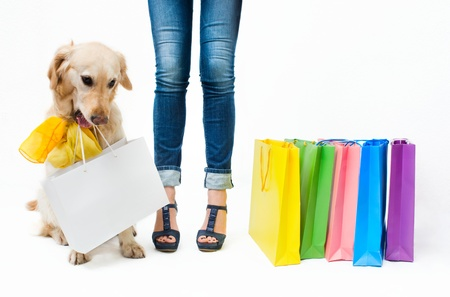 animal leg: Girl in jeans with the dog and packages Stock Photo