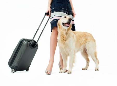 Girl in dress with dog and suitcase on wheels photo