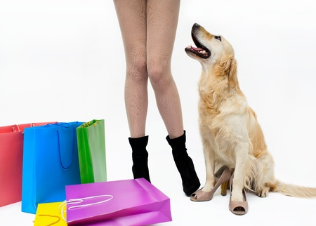 Girl with the dog and packages photo