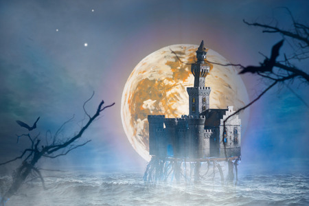 Fantastic story with a old castle and bats photo