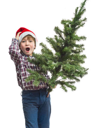 waiting glance: Little Santa with a Christmas tree in the hand of Stock Photo