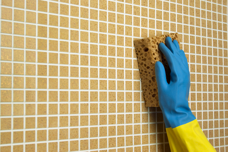 yellow sponge with a blue glove on the brown cells