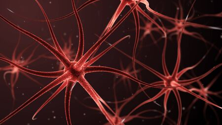 neurone: 3d illustration of neurons forming a neural network Stock Photo