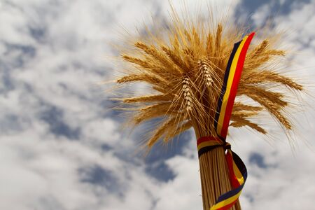 Ears of wheat and the romanian tricolor ribbon Stock Photo