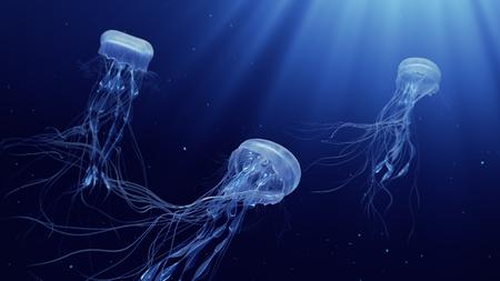 3d illustration of jellyfishes swimming in deep ocean Stockfoto - 121098612