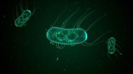 E. Coli bacteria 3d illustration Reklamní fotografie