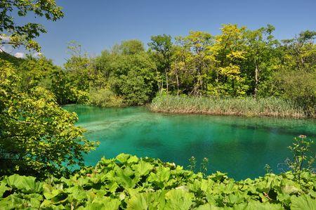 Turquoise lake in Plitvice national park, Croatia