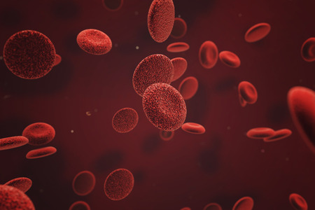 globulo rojo: Gl�bulos