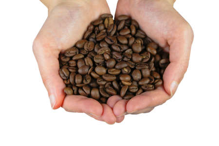 Image of two hands holding coffee beans-isolated over white background with clipping path. photo