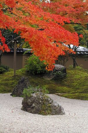 Image of an autumn Japanese garden with specific rocks,sand and maple tree. Stock Photo - 1525304