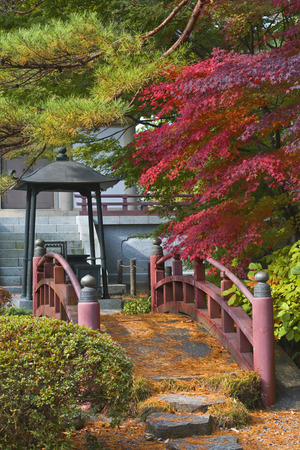 Beautiful apsect from a Japanese garden with a traditional bridge.Location: Rinoji Temple garden,Sendai,Japan. photo