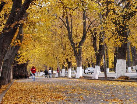 Aspect from an autumn city in an Eastern European city-Cluj Napoca,Romania Stock Photo - 3246603