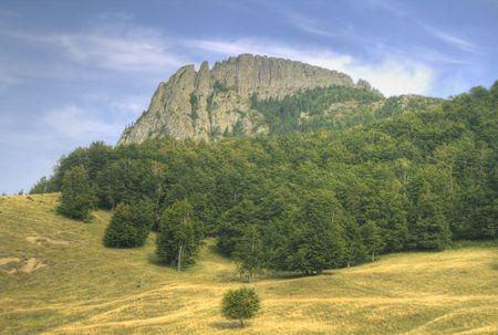 Gallo peine es una parte residual de un cráter volcánico con andesita estructura que tiene un gallo peine shape.It es un monumento nacional y está situado en el Gutin Montañas, Rumania. Foto de archivo - 3522417