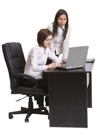 expertize: Two young businesswoman working together on a laptop at their office desk.