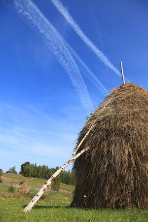 hayrick: Image of a hayrick in a field against a blue sky with airplane traces.