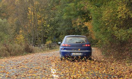 itinerary: Image of a car on a rural autumn road full of colorful leaves.