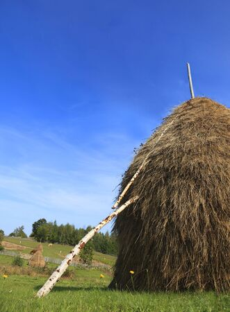 hayrick: Image of a hayrick in a field against a blue sky
