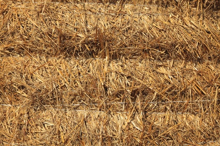 haycock: Close-up image of a pile of haystack.