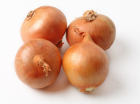 allium cepa: Image of four onions (Allium cepa) against a white background with shadows. Stock Photo