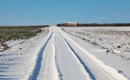 Tracks of a car in a field covered by snow in winter. photo
