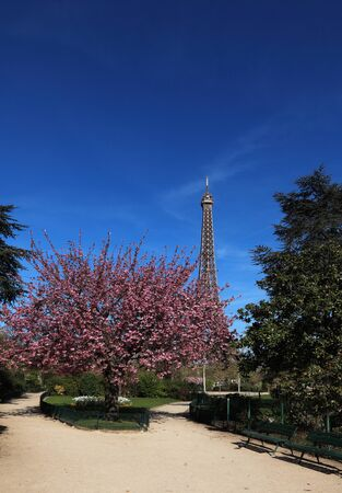 Image during the spring, of the Eiffel Tower from a beautiful park in the vicinity  photo