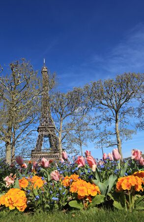 Image of the famous Eiffel Tower seen from a flower garden, behind some bare trees in spring  photo