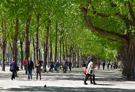 champs: Paris,France-April 1st, 2012: In a beautiful spring day people walk on a the green part of the most famous boulevard in the world- Avenue des Champs Elysees in Paris. Editorial