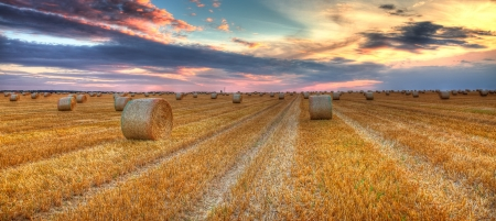 Beautiful sunset over a field with bales of hay