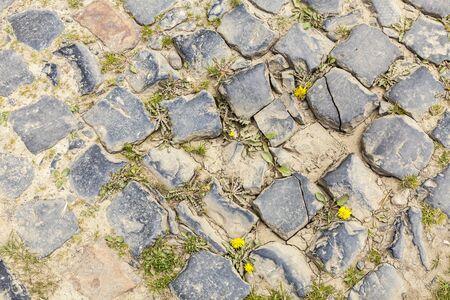 course cycliste: D�tail d'un chemin de cobbelstone situ� dans le Nord de la France, pr�s de Lille. Sur ces routes chaque ann�e est organis� un des plus c�l�bres v�lo d'une journ�e la course Paris-Roubaix. Banque d'images