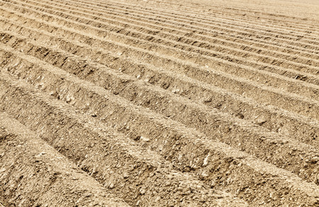the ploughed field: Detail image of a ploughed field with furrows. Stock Photo