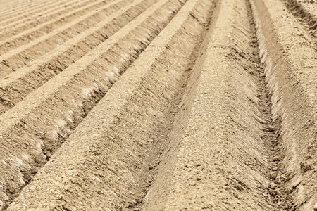 furrows: Detail image of a ploughed field with furrows. Stock Photo