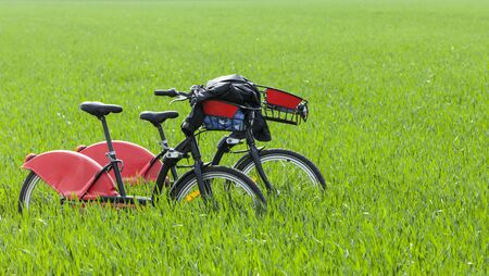 periphery: Urban bicycles are in a green field of cereals at the periphery of a big city. Stock Photo