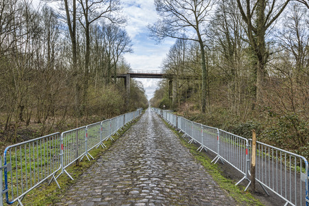 Image of the famous cobblestone road from the forest of Arenberg (Pave d